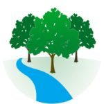 Dessiner des arbres en courant