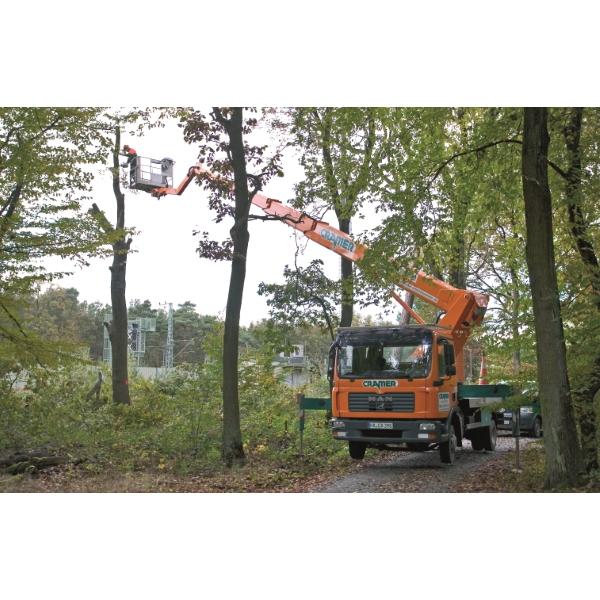 T30 LKW Arbeitsbühne bei Baumpflegearbeiten